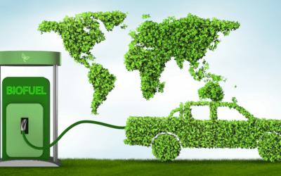 Greene Waste to Energy ha recibido una ayuda cofinanciada por Ivace y los fondos Feder de la Unión Europea en el expediente IMAPEA/2018/42