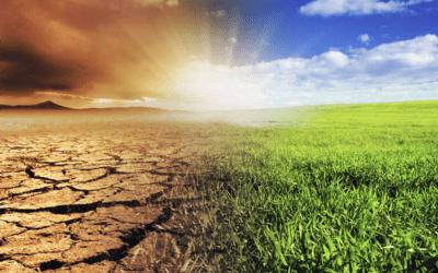 Declarada la emergencia climática